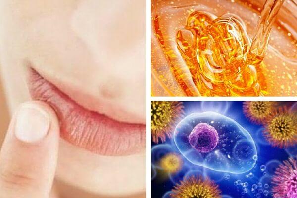 5 maravillosos beneficios de la miel natural