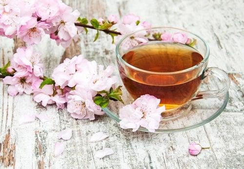 Como preparar chá de flor de cerejeira?