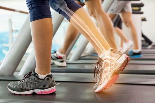 Todo lo que deberías saber acerca de los huesos