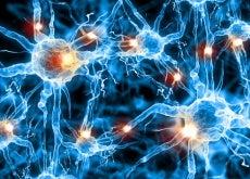 Pueden prevenir el Alzheimer