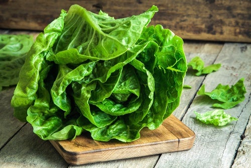 Té de hojas de lechuga alimentos verdes