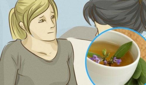 Regula las hormonas y la libido con estos remedios