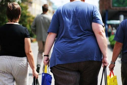 Mujer obesa caminando con las compras