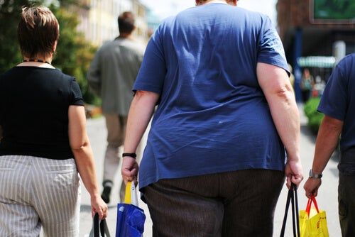 patatas fritas produce obesidad