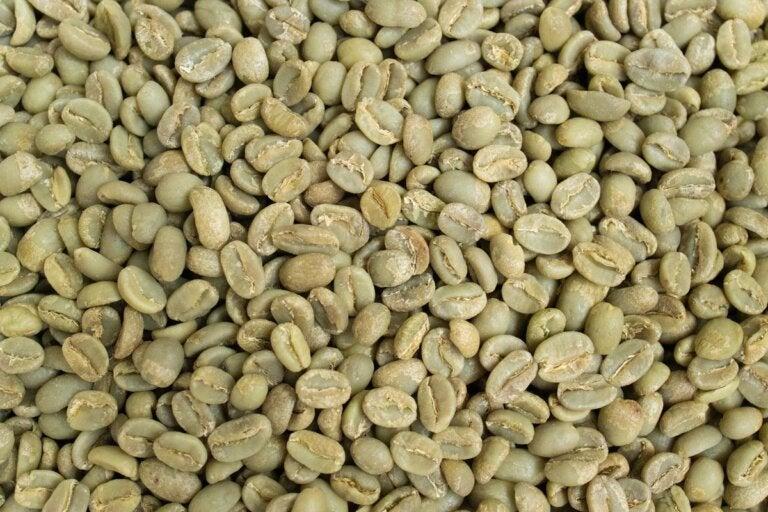 Beneficios que desconocías del café verde