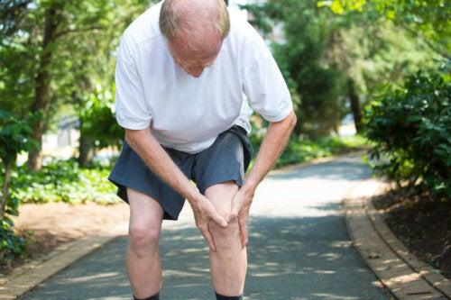 9 alimentos que debes evitar si sufres de dolor articular