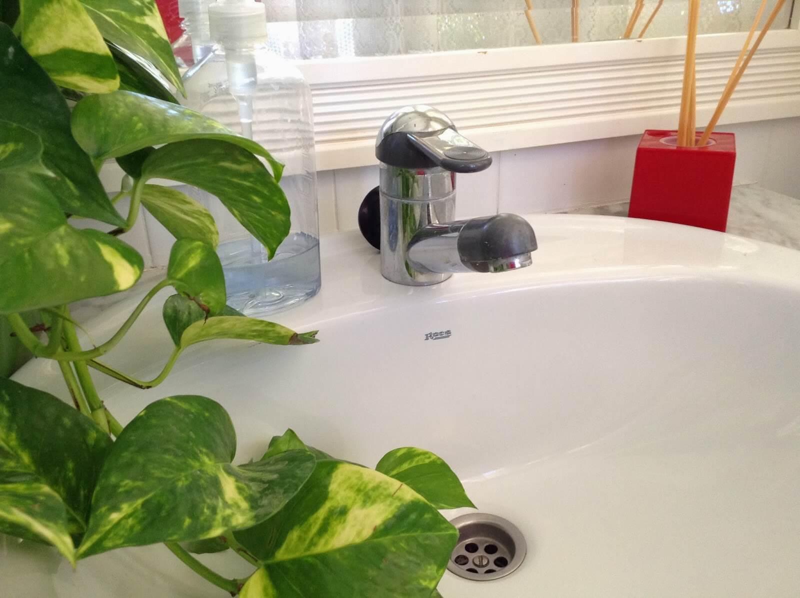 Cómo eliminar el mal olor de las cañerías en el hogar