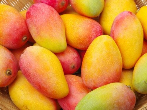 15 ventajas de los mangos para la piel, el cabello y la salud