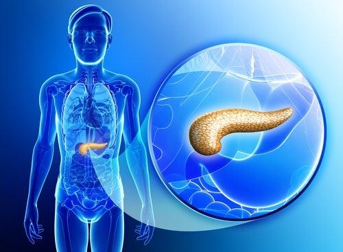 enfermedades del páncreas por la diabetes