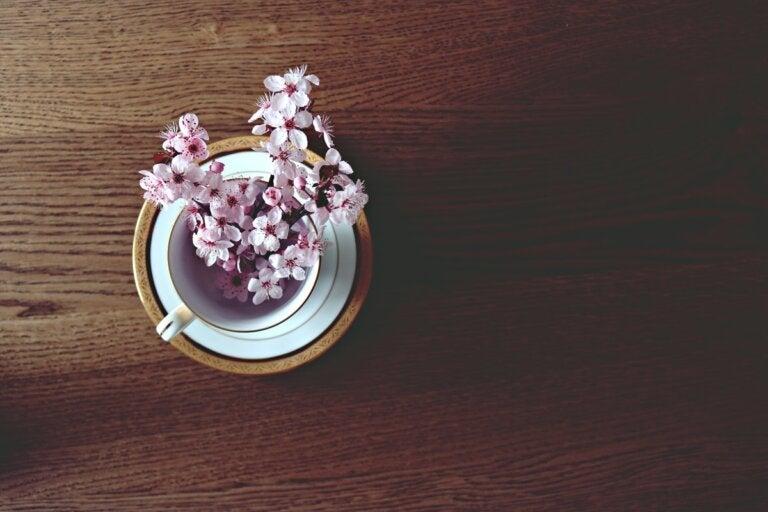 Cómo preparar un té de flores de cerezo para combatir la retención de líquidos