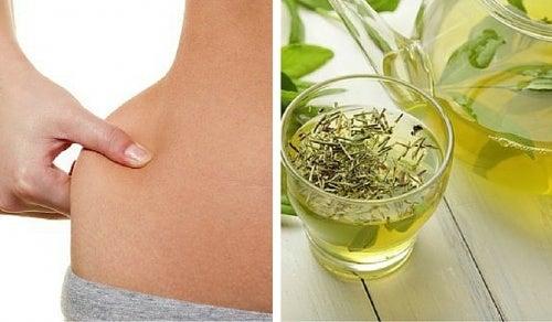 6 bebidas con té verde para perder peso
