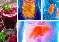 Cómo desintoxicar cada órgano vital