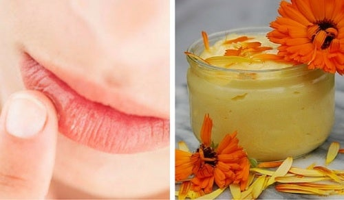 Crema hidratante para proteger los labios resecos y agrietados