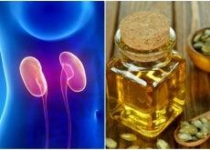 El aceite de semillas de calabaza favorece tu salud renal