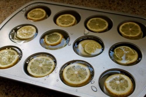limon-cubitera