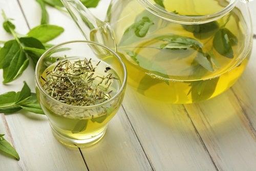 El té verde nos ayuda a quemar calorías.