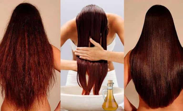 ¿Quieres fortalecer tu cabello? No dudes en probar este acondicionador 100% natural