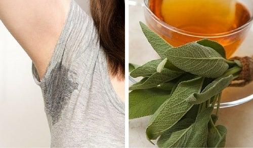 6 remedios caseros que te ayudarán a controlar el sudor