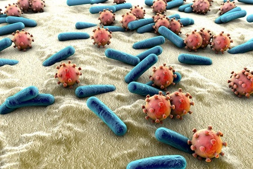 enfermo muy seguido bacterias