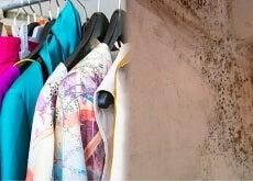 Con estos trucos económicos podrás quitar el olor a moho de tu ropa
