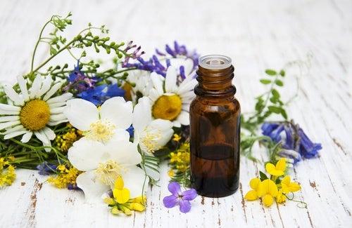 Encuentra tu aroma