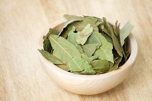 Laurel, uno de los mejores antiinflamatorios naturales