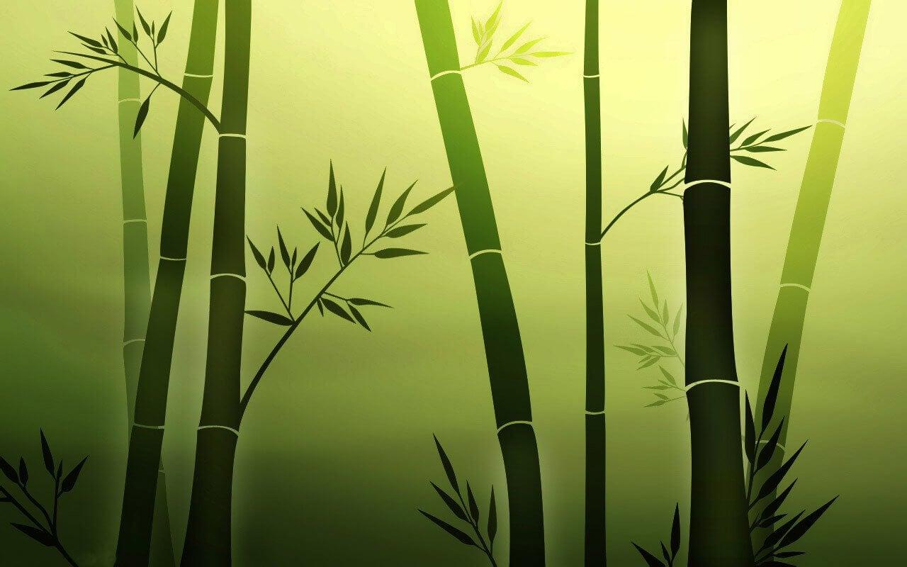 bambu personas resilientes