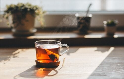 5 extraordinarios tés para bajar de peso fácilmente