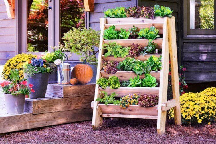 5 ideas para llenar nuestro hogar de energía positiva (3)