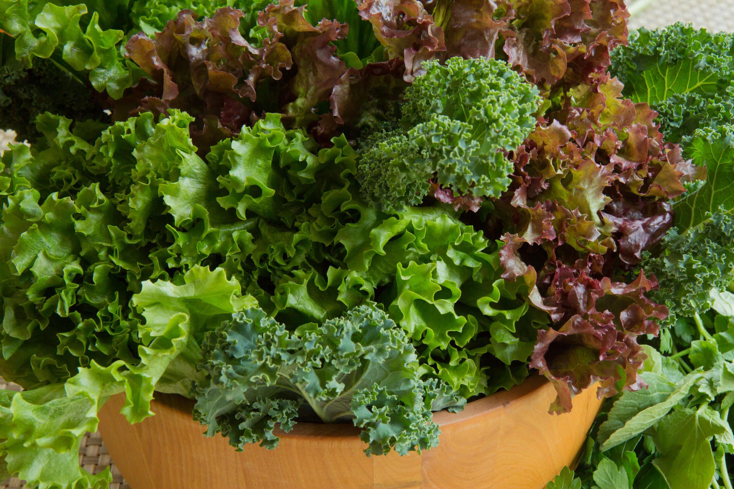 Los alimentos alcalinos ayudan a combatir algunas enfermedades.