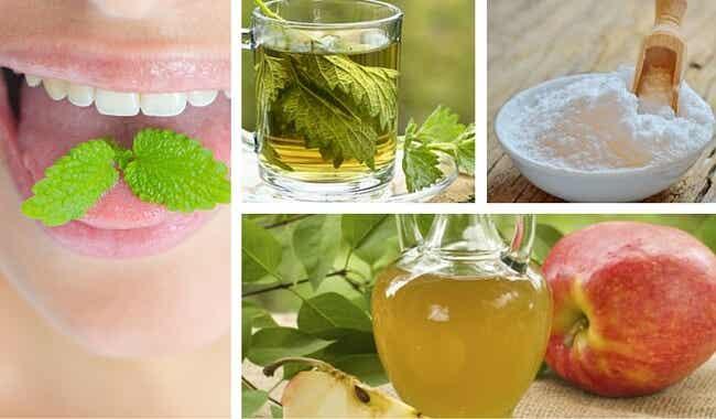 Los 9 mejores remedios caseros para aliviar el mal aliento o halitosis