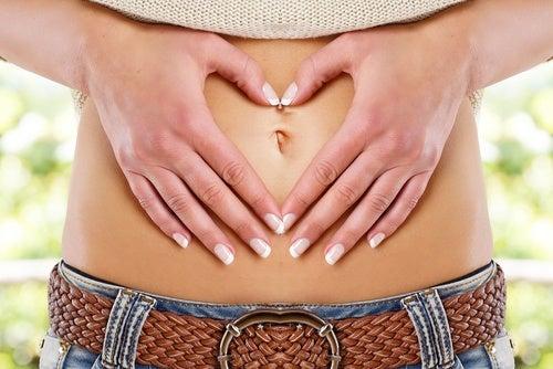Apoya la función digestiva