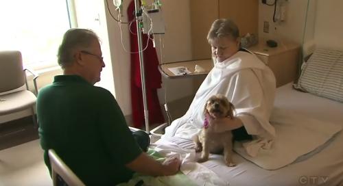 Mujer en el hospital con su perro