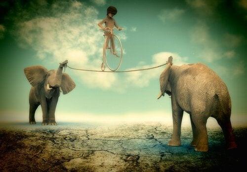 Niño-en-equilibrio-sobre-cuerda-sostenida-por-dos-elefantes
