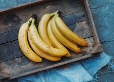 guineo o banana