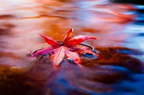 Fluir: un maravilloso enfoque para combatir el estrés