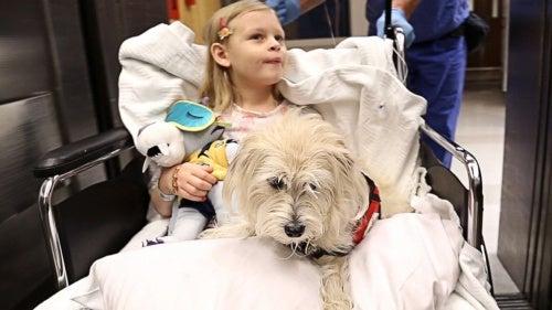 Niña en el hospital con su perro