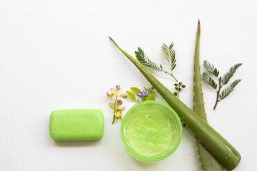 ¿Cómo hacer un jabón de aloe vera con efecto hidratante?