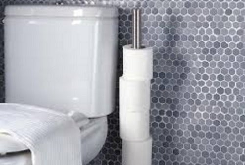 A toilet and toiler paper.