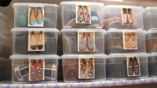 Cajas-zapatos