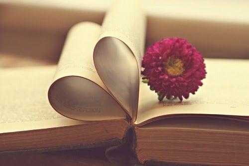 Dale una oportunidad a las novelas románticas