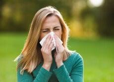 Reduce las alergias