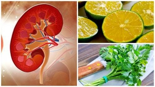 Este jarabe de limón y perejil te ayudará a combatir los cálculos renales