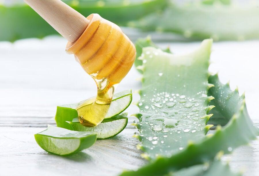 Combate la acidez y la gastritis con tan solo dos ingredientes