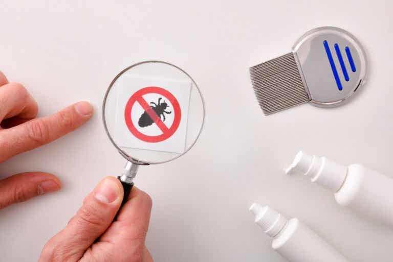 7 formas naturales de eliminar los piojos