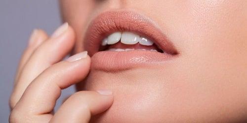 labios nude