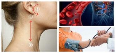 Método natural para bajar la presión arterial en 5 minutos