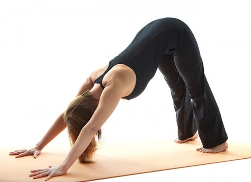 perro-boca-abajo-yoga el dolor de espalda