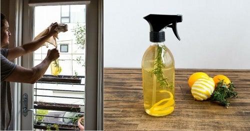 Ambientador-cáscara de limón