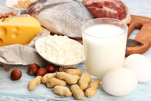 5 alimentos ricos en proteínas que debes incluir en tu dieta
